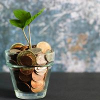 A plant growing out of a vase filled with coins.